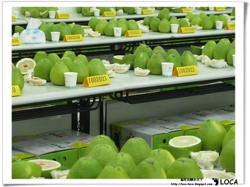 柚香傳百年,左岸好休閒IMG_7955_7990.jpg