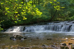 Postcard Falls (+David+) Tags: waterfall hoodoo lefthandside allenscreek townofbrightonny postcardfalls splashofsunshine