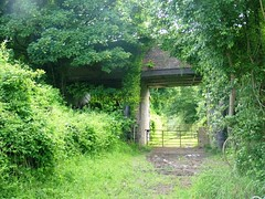 Shannonpark bridge (abandoned railways) Tags: travel ireland history abandoned cork railway historical passage coaches wagons blackrock cbpr