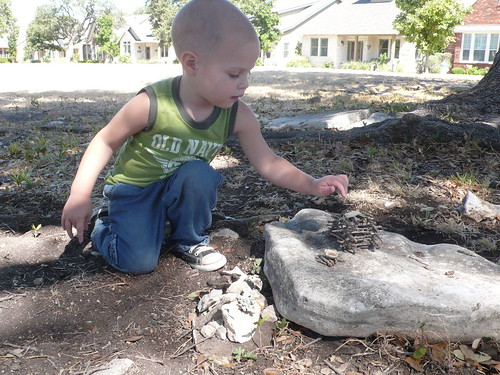 Building fairy houses with Billy