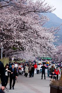 Seoul Grand park again (13)