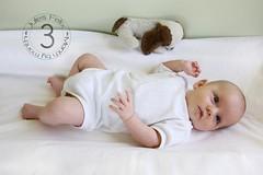 Jules - 3 months