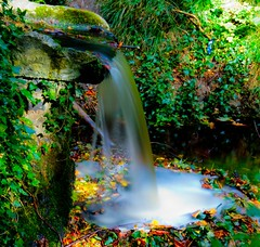 Ring of bright water (Steve-h) Tags: park longexposure blue autumn ireland dublin reflection green nature yellow wall woodland gold grey waterfall exposure colours head small tripod september filter tiny bushes silky density neutral bushypark lightweight ndfilter 2011 iso50 steveh manfrottotripod silkywater 10second superaplus aplusphoto canonef1635mmf28liiusm 190cxpro4 canoneos5dmkii canoneos5dmk2 doublyniceshot doubleniceshot fadernd tripleniceshot mygearandme mygearandmepremium mygearandmebronze mygearandmesilver mygearandmegold mygearandmeplatinum mygearandmediamond dblringexcellence tplringexcellence artistoftheyearlevel3 artistoftheyearlevel4 exploreinterestinglastsevendays eltringexcellence 4timesasnice 6timesasnice 5timesasnice faderndneutraldensityadjustablefilter stonelip 391rc2manfrottolightweighthead 7timesasnice rememberthatmomentlevel4 rememberthatmomentlevel1 rememberthatmomentlevel2 rememberthatmomentlevel3 rememberthatmomentlevel7 rememberthatmomentlevel9 rememberthatmomentlevel5 rememberthatmomentlevel6 rememberthatmomentlevel8