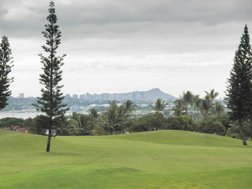 WAIKELE COUNTRY CLUB 030