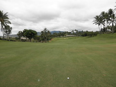 WAIKELE COUNTRY CLUB 115