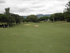WAIKELE COUNTRY CLUB 163