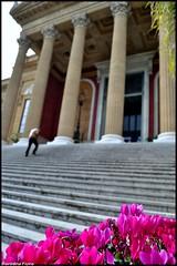 Salita (Barbara Fi@re) Tags: scale nikon palermo sicilia vita colonne teatromassimo salita gradini pilastri coraggio