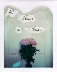 bend towards the sun (emilie79*) Tags: roses handwriting jeffbuckley polaroid180 wordsonpaper iduvfilm