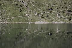Segments (Markus Moning) Tags: lake reflection nature water schweiz switzerland see natur trails surface trail segment moning segments oberflche nidwalden bannalp markusmoning bannalpsee canoneos50d