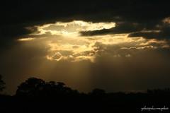 Tramonti di Sardegna-puestas de sol de Cerdeña (yokopakumayoko) Tags: sardegna nuoro birthinspring tramontidisardegna sunsetinsardinia fleursetpaysages tramontidiyokopakumayoko tramontiecolori fotografareitramonti tramontifantasy