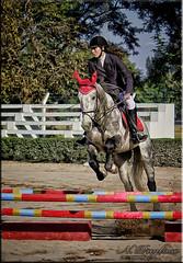 Jumping - Saltando (Nstor Pugliese) Tags: horse argentina caballo tucumn