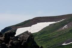 北鎮岳の雪渓を歩く人たち