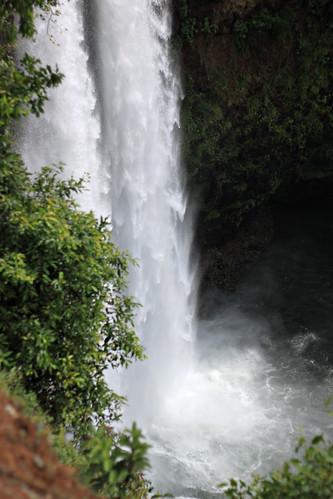 Kauai 721