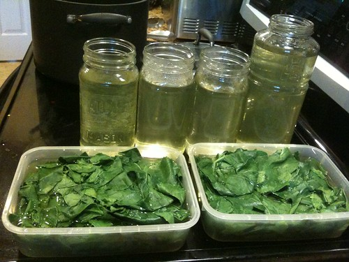 Cooked Collards, Saving Water for Soups