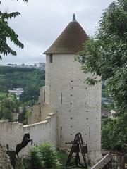 2011-3-france-provins-132-remparts