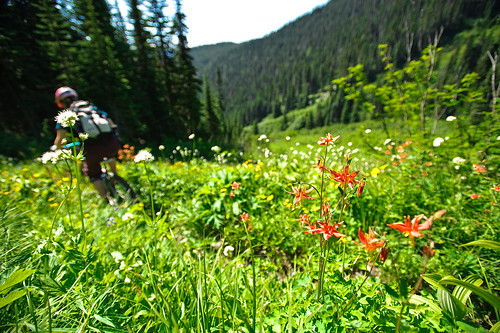 Tenquille Trail Alpine ride Aug 12 2011 -5