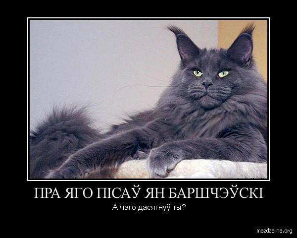 Кот Варгін. Беларускія дэматыватары на mazdzalina.org