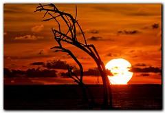 Sundown (Dolly MJ) Tags: sunset sky sun color beach water waves borneo slowshutter kotakinabalu redsky sabah kk southchinasea longexpose ombak beautifulsunset borneoisland colorfulclouds northborneo kotakinabalusunset sabahsunset borneosunset sunsetinborneo beautifulkk