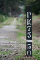 PK75-50 (CamiloMazuera) Tags: canon de point colombia bokeh campo camilo vanishing suesca profundidad mazuera