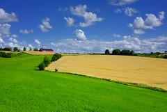 Nannestad i august #1 (Krogen) Tags: summer norway landscape norge sommer norwegen august noruega scandinavia akershus romerike krogen landskap noorwegen noreg skandinavia nannestad fujifilmx100