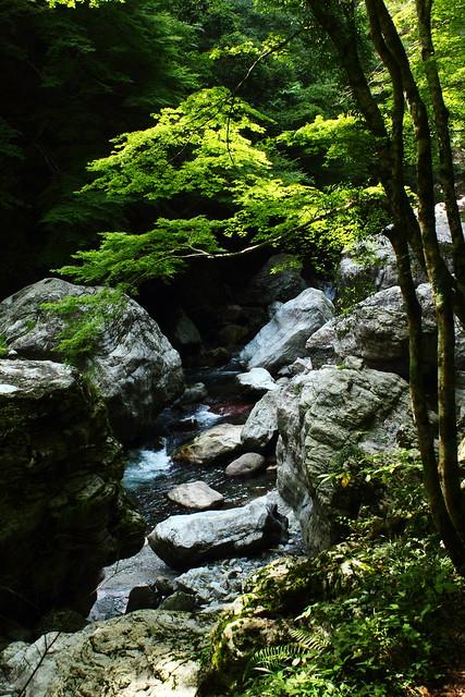 Nakatsu Valley