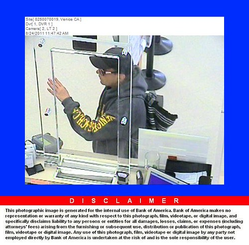 Bank of America Robber