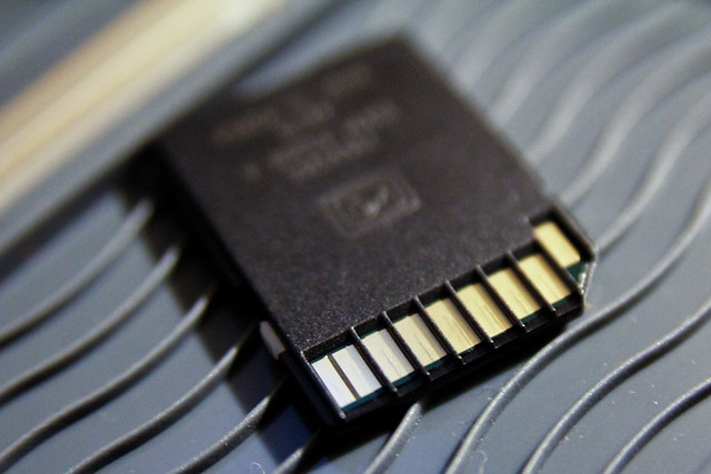 8 GB Lexar Platinum II SDHC Card August 11, 20112