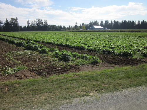 Vista D'Oro (Langley BC, Circle Farm Tours)