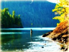 the first leaf falls...... (calamityjan2008) Tags: trees light summer lake fall water yellow reflections boat rocks piling yellowleaf endofsummer lightonthewater mothernaturesgreenearth mygearandme thefirstleaf thefirstleaftofall