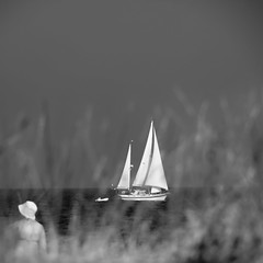 Go away with me (Color-de-la-vida) Tags: france roussillon plage voilier saintemarielamer rosellón colordelavie goawaywithme toucherlesailesdesoiseaux