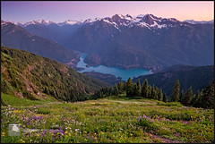 1371. (koaflashboy) Tags: twilight backpacking wildflowers northcascades northcascadesnationalpark diablolake colonialpeak bostonpeak sahalepeak sourdoughmountain snowfieldpeak mtlogan mtbuckner canon7d