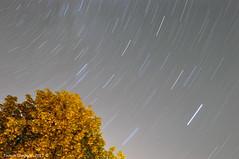 Star Trails (Photography Through Tania's Eyes) Tags: nightsky sky stars dark night peachland okanagan okanaganvalley bc britishcolumbia canada taniasimpson photographer photography photograph photo image copyrightimage nikon nikond90