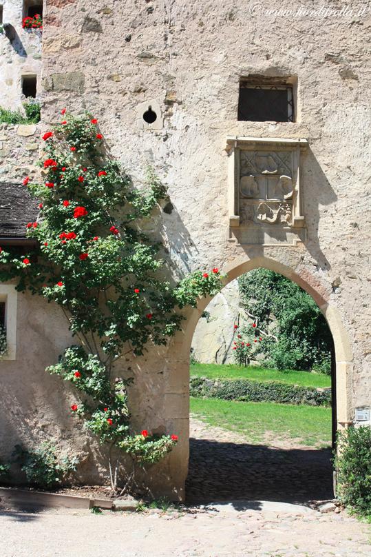 Castel Presule - particolare