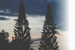 My Remedy. (L.Huynh) Tags: new trees sky liz love silhouette canon hope poem text picnik