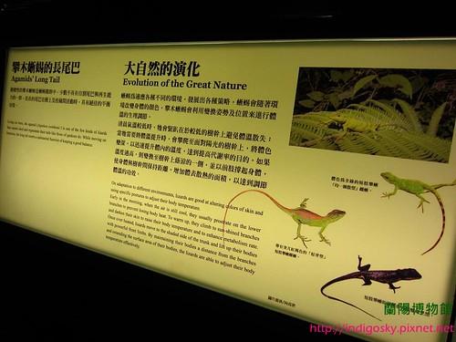 蘭陽博物館-IMG_2128W