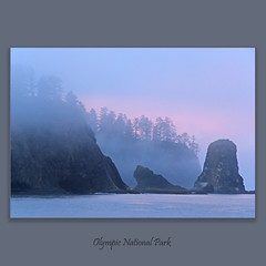 Rialto Beach #0457 on Explore Sep 01 2011 #468 (alexander.garin) Tags: seascape nature washington olympicnationalpark rialtobeach bestcapturesaoi elitegalleryaoi