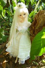 A walk in the woods (riven_tiana) Tags: fir soom rosette