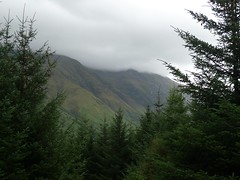 West Highland Way 003