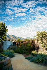 My (no) labor day (...-Wink-...) Tags: california clouds fence jay shed pam ojai sigma18200 nikond80