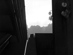 IMG_5388 (Mikel Aramendia Iriarte) Tags: london walking urbannature psychogeography citywondering