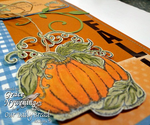 pumpkin-patch-pumpkin-detai