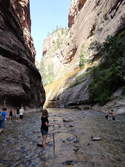 DSC00159 (johnspoelder) Tags: zion narrows