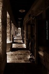 luminosity of the corridor (puthoOr photOgraphy) Tags: monochrome dk lightroom d90 adobelightroom nikond90 souqwaqif lightroom3 qatarliving tokinaaf1116mm amazingqatar tokina11 souqwqaif gettyimagehq