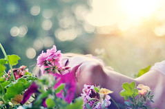(laura zalenga) Tags: flowers light woman sun green nature girl face colorful bright bokeh balcony laurazalenga ©laurazalenga
