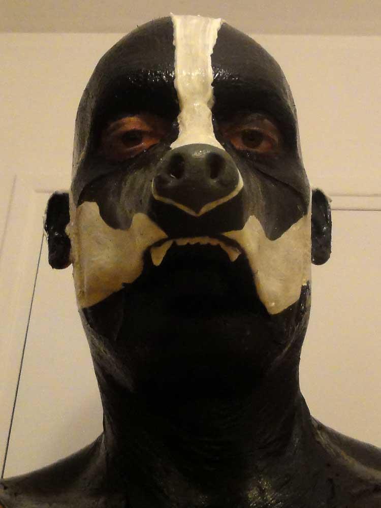 Honey Badger Face Paint