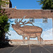 Living Walls (The Elk) - Albany, NY - 2011, Sep - 11.jpg by sebastien.barre