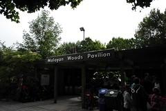 Malaysian Woods Pavilion
