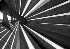 Quay Curves (Proliphic) Tags: city urban blackandwhite bw toronto abstract curves line converginglines trevormorgan