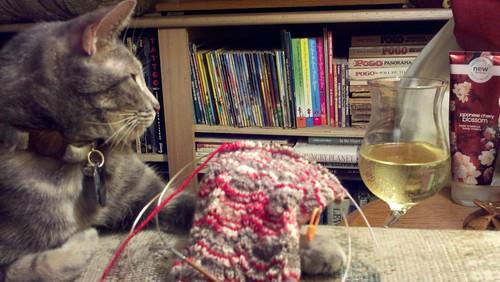 Moya ponders knitting vs. champagne