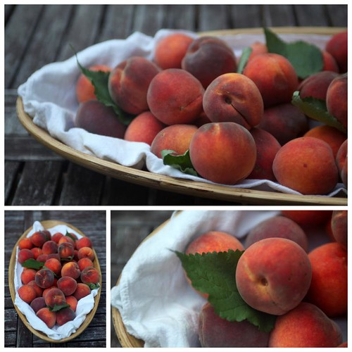 red peaches